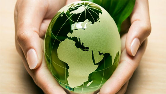 Dịch vụ dịch thuật  môi trường
